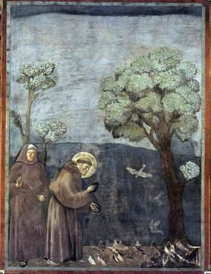 Legend of St Francis- 15. Sermon to the Birds 1297-99