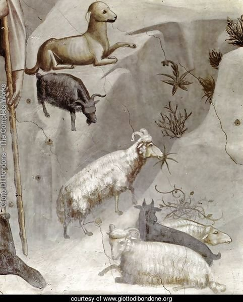 No. 5 Scenes from the Life of Joachim- 5. Joachim's Dream (detail) 1304-06