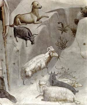 Giotto Di Bondone - No. 5 Scenes from the Life of Joachim- 5. Joachim's Dream (detail) 1304-06